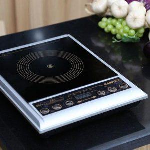 Bếp hồng ngoại Sanaky SNK-102HG