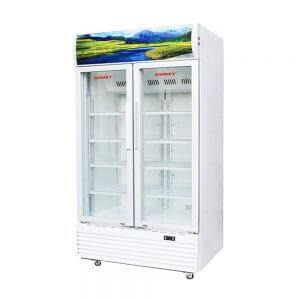 Tủ mát Sanaky VH-1009HP